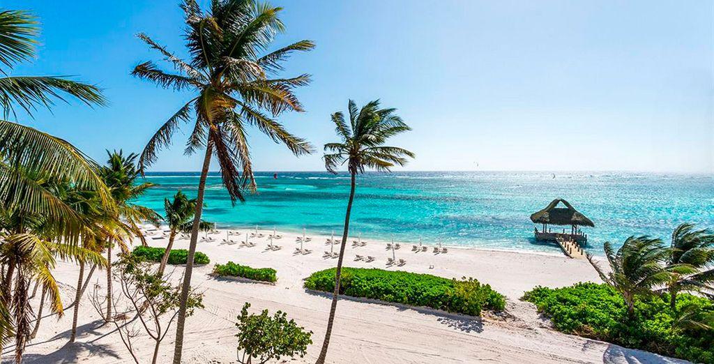 Bienvenido al The Westin Punta Cana Resort