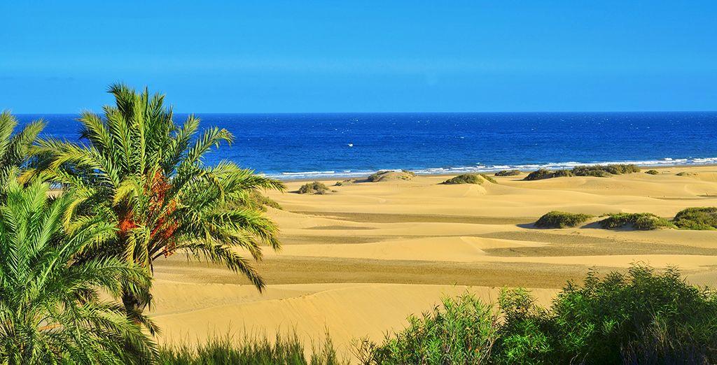 La Playa del Inglés es un paraíso