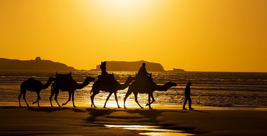 Marruecos te enamorará