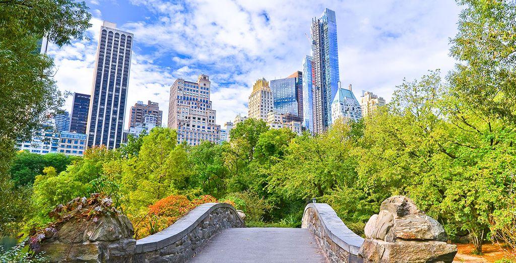 Hilton Garden Inn Central Park South 4 Voyage Priv Hasta 70
