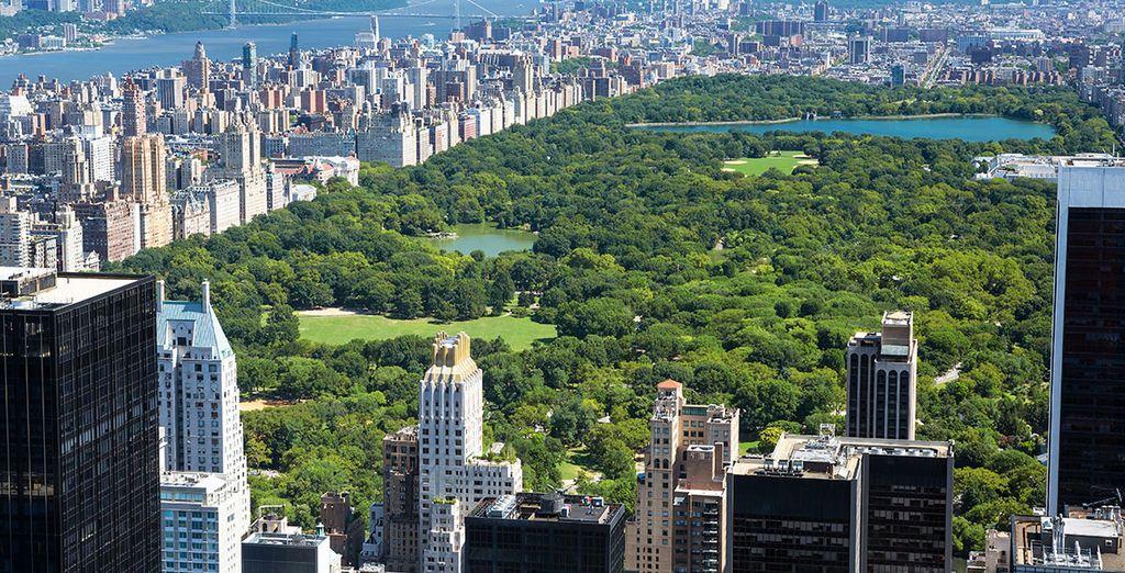 Nueva York es el destino que estabas buscando