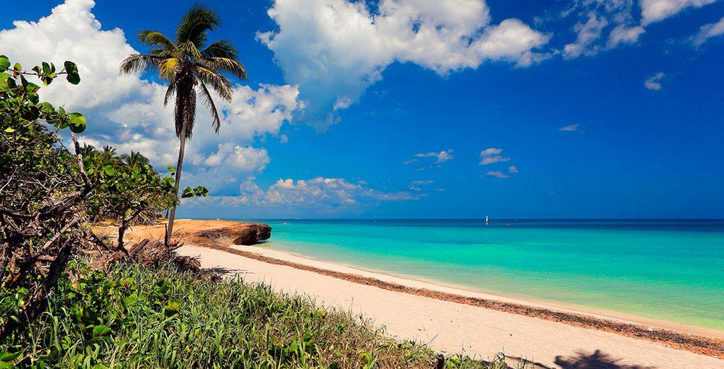 Relájate en sus playas
