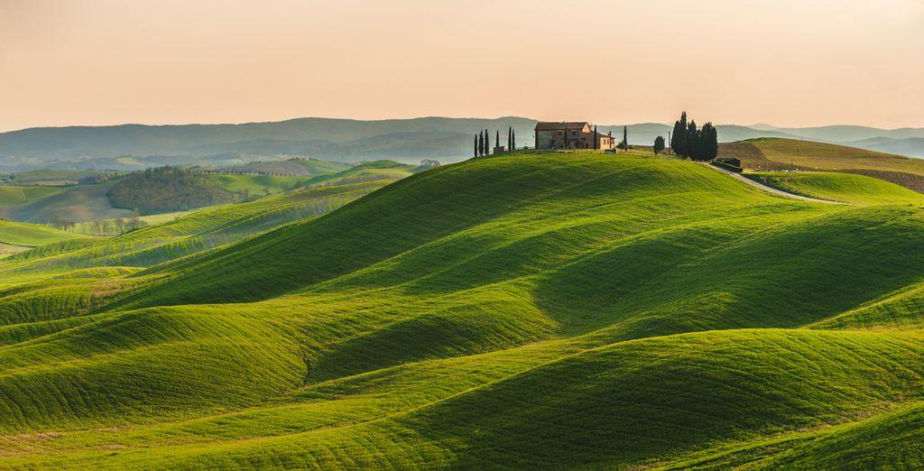 Descubre la belleza de La Toscana
