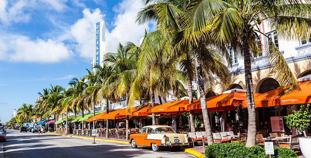 Descubrirás la famosa Ocean Drive, con sus terrazas y neones