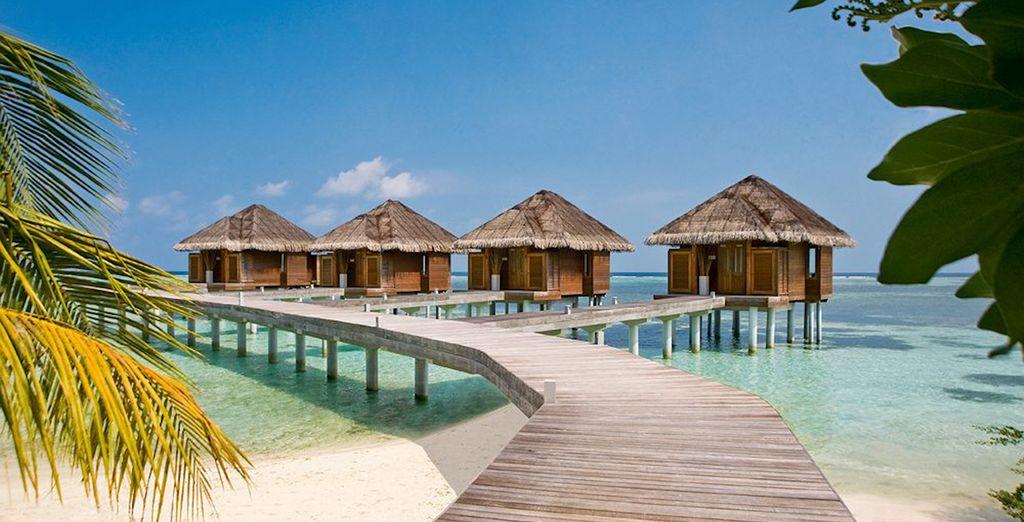 Pasea sobre el mar en LUX South Ari Atoll 5*