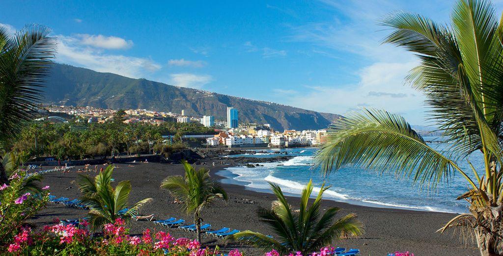 Muy cerca del hotel se encuentra Playa Jardín