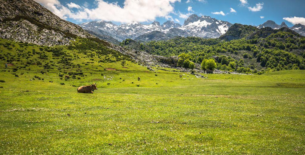 Las cumbres más altas de la Cordillera Cantábrica se encuentran en este paraje