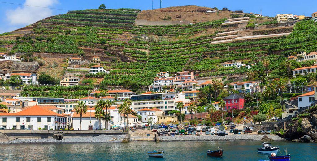 ¡Disfruta de Madeira!