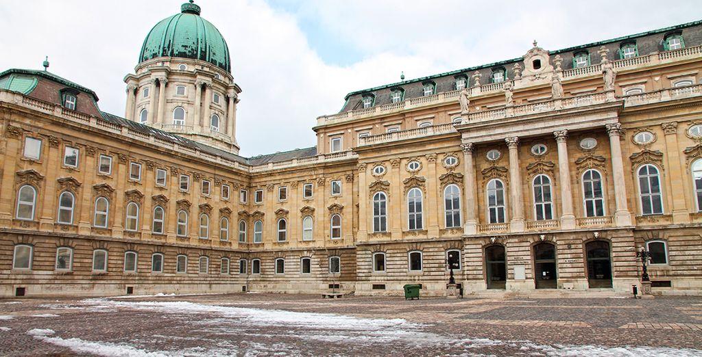 Dispondrás de acceso gratuito a los museos de la ciudad, como el de Bellas Artes