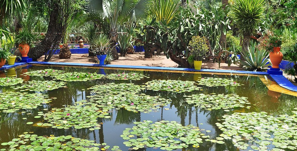 El pintor Jacques Majorelle creó los jardines Majorelle en 1924