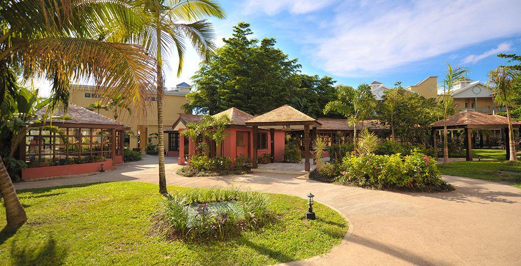 Verdes espacios en tu hotel 5*