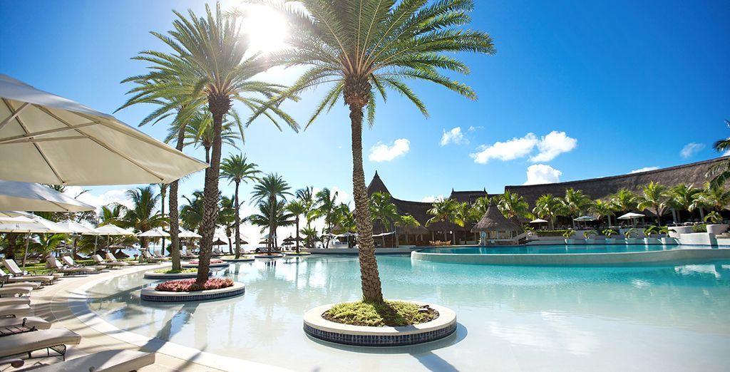Y disfruta de un baño en una de las piscinas más grandes de la isla ...