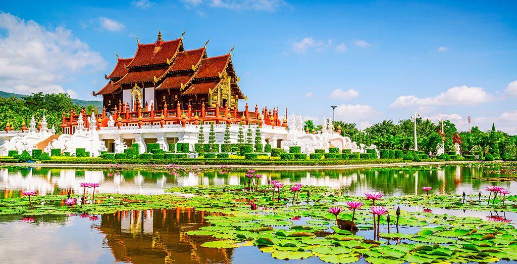 Visita los bellos templos