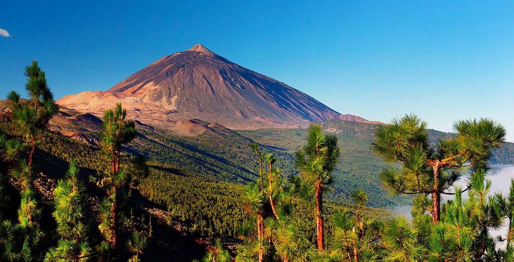Planea una excursión al Teide