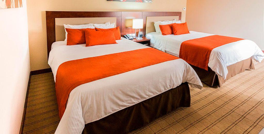 Descansa en tu cómoda habitación