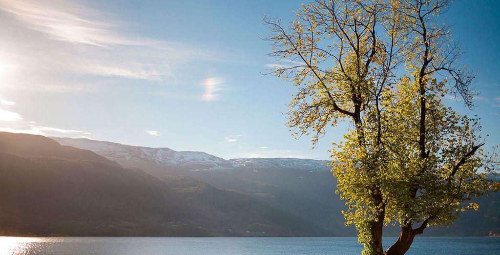 Visitarás Voss antes de llegar a Bergen