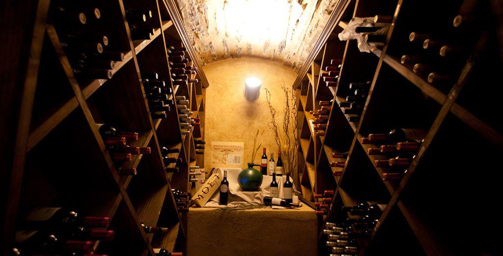 Prueba los mejores vinos