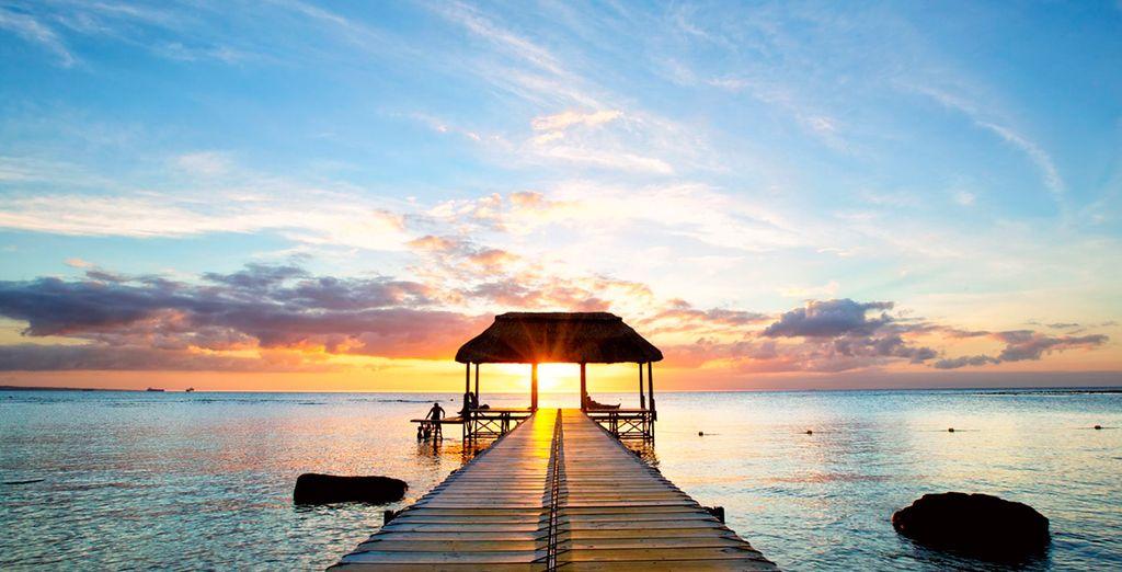 ... para encontrar el paraíso en la Tierra: ¡Mauricio te espera!