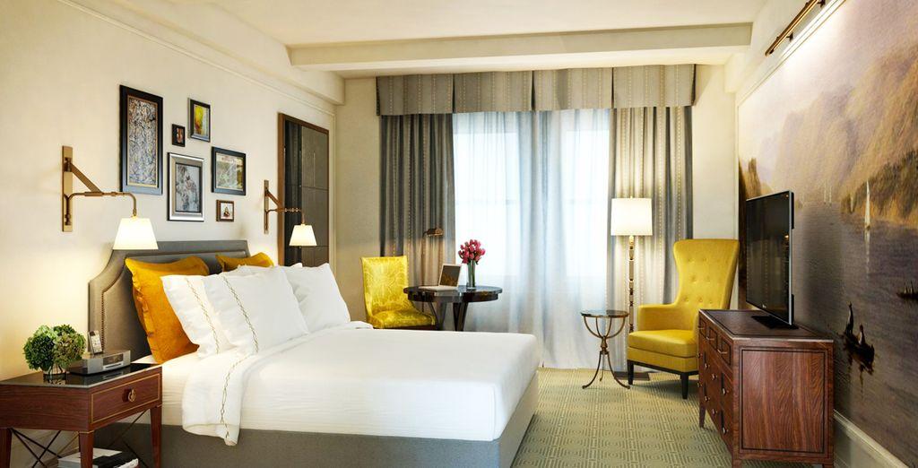 Descansa en tu elegante habitación