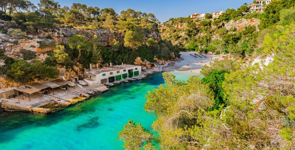Viajes a Palma de Mallorca