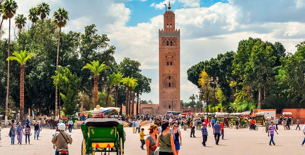 Actividades en Marrakech