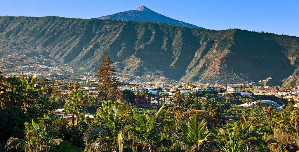 Cruceros en Gran Canarias - Tenerife