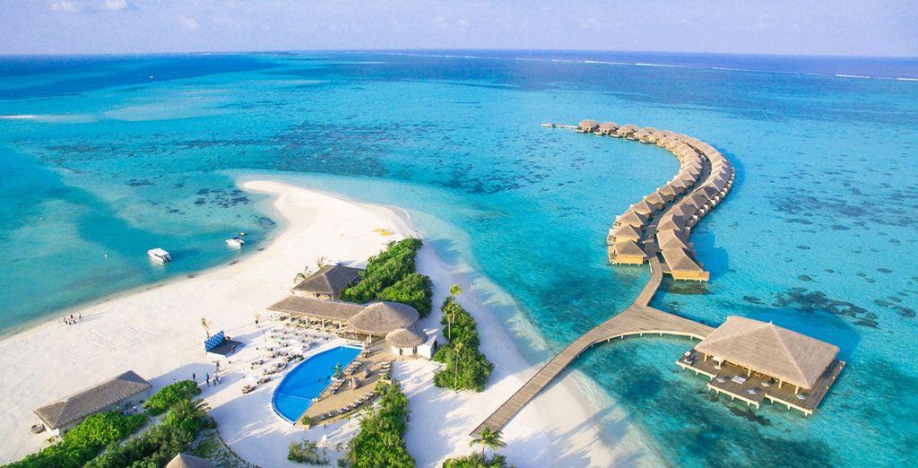 25884c71bf95 Opiniones - Cocoon Maldives 5* - Lhaviyani Atoll | Voyage Privé