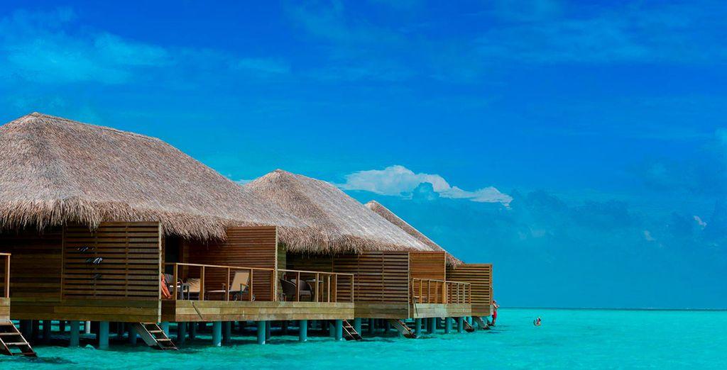 Si viajáis Solo Adultos podréis escoger una mejora a: Lagoon Villa o Lagoon Suite