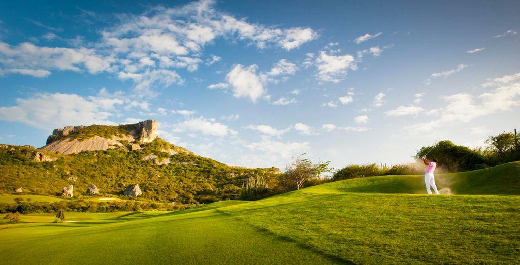 Disfruta del golf