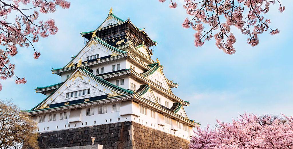 Tendrás oportunidad de contemplar el Castillo de Osaka, que remonta al año 1583