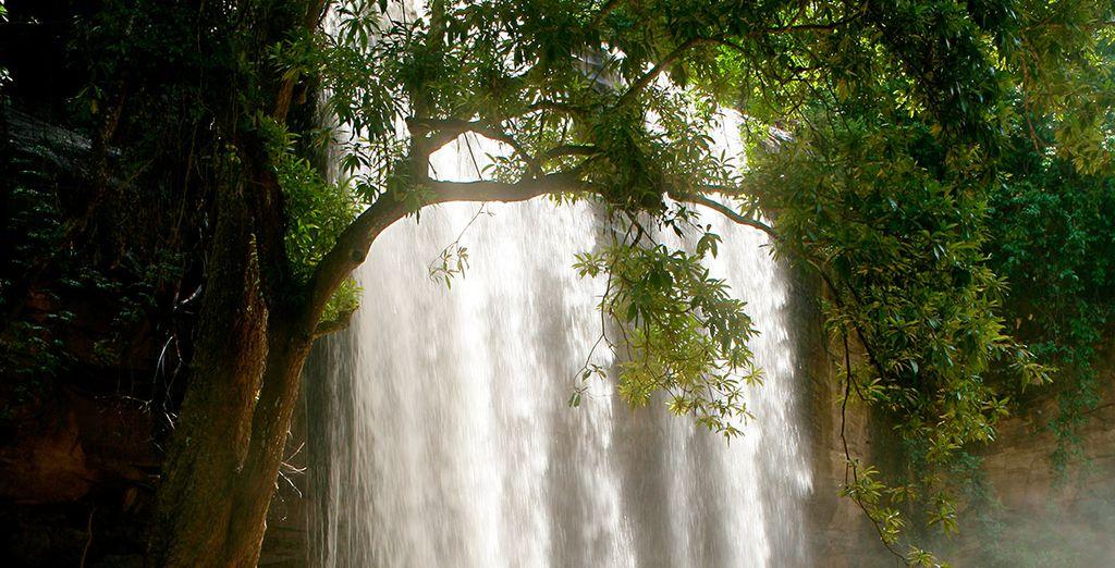 Las cataratas Sheldrick, un lugar fascinante