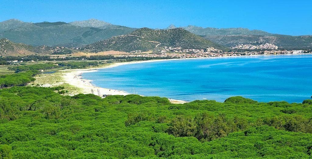 Un lugar donde la vegetación se une con el azul del mar