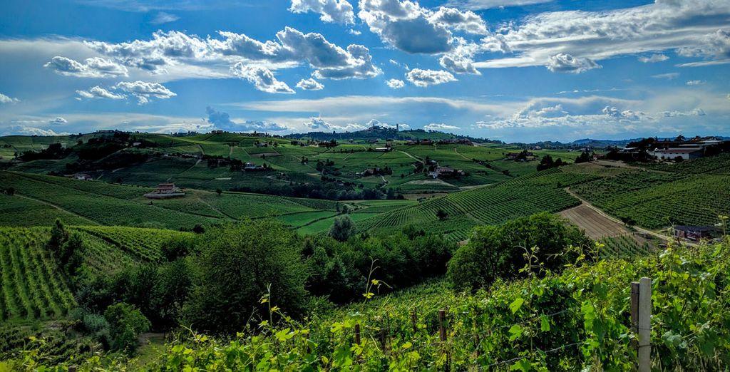 Dirígete a las colinas de Monferrato