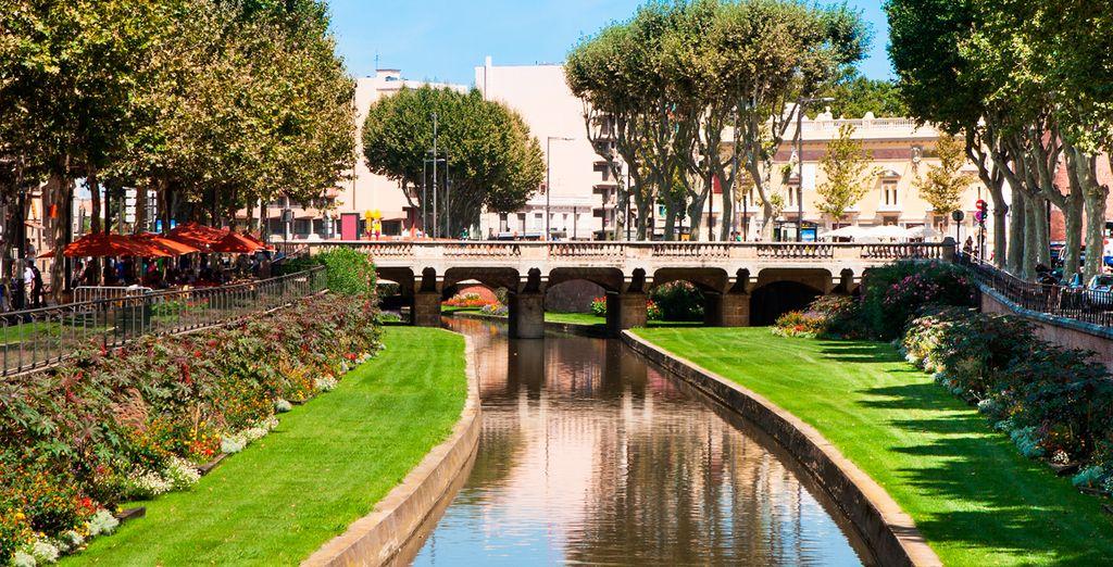Disfrute de la pequeña ciudad de Perpignan