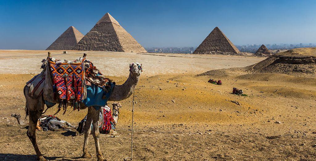 Después del crucero pasará unos días en El Cairo