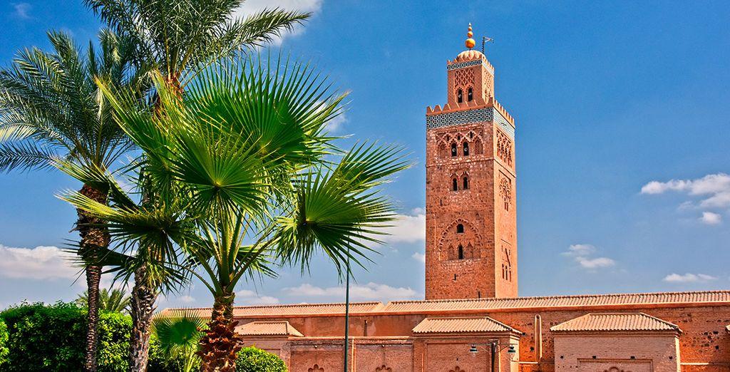 Sal a descubrir Marrakech