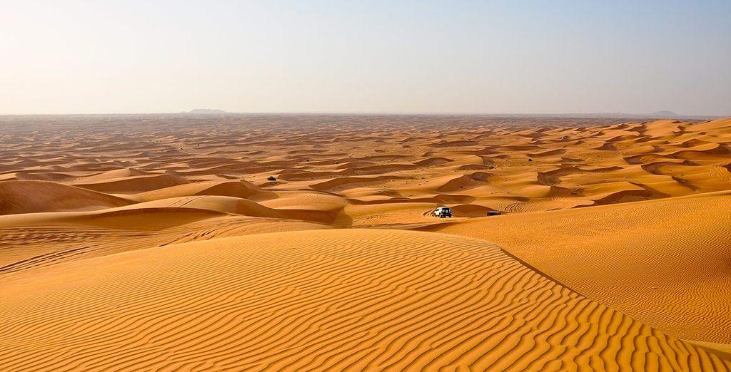 Un oasis surgido en mitad del desierto