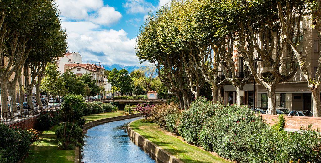 Disfrute de Perpignan en el centro de la ciudad