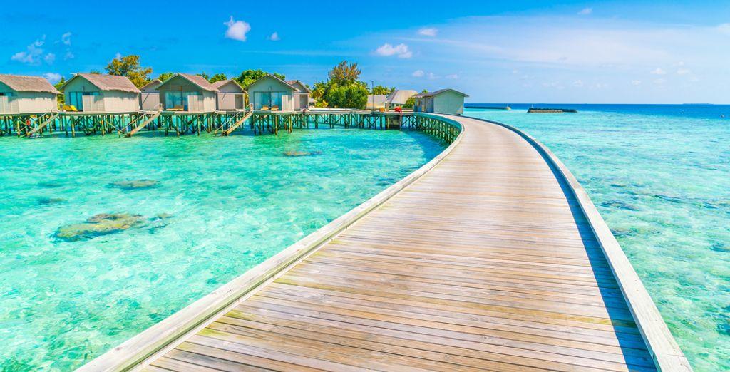 Ofertas de vacaciones, planes, chollos vacaciones