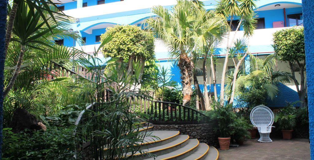 Madeira Encantadora en el Hotel Rocamar 4*