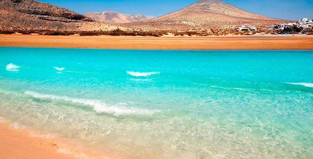 Conoce las mejores playas de Fuerteventura