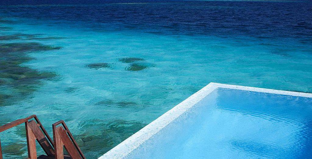 Avec la beauté naturelle des Maldives !