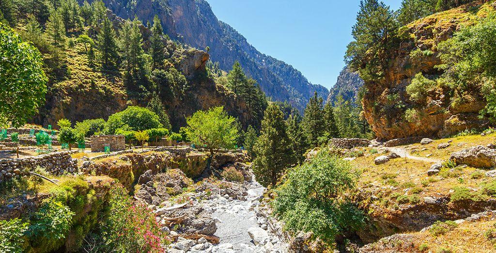 Paysage verdoyant en Crète et parc naturel