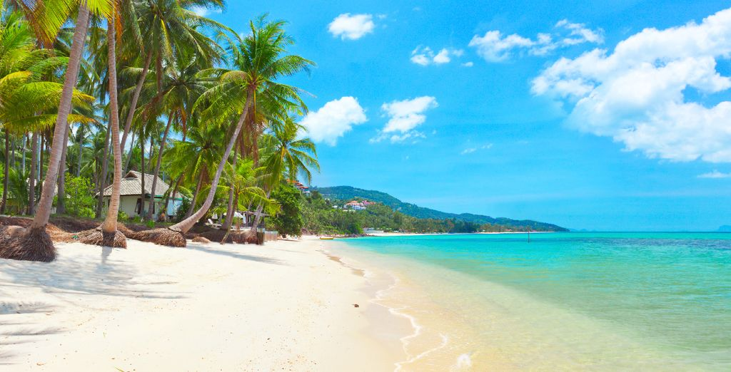 À Koh Samui, un joyau turquoise entouré de sable blanc...
