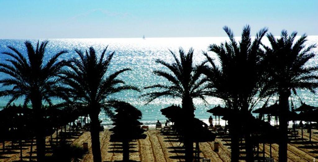 - Nahrawess Hôtel & Thalasso Resort **** - Hammamet - Tunisie Hammamet
