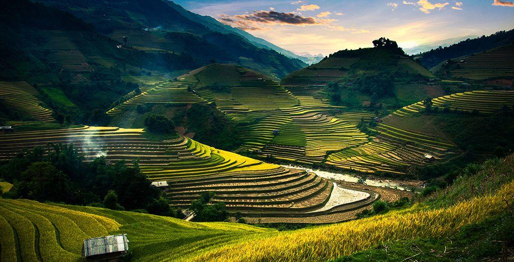 Envolez-vous pour l'Indonésie ! - Combiné The Lokha Ubud Resort Villas & The Stones Autograph Collection hôtels 5* Ubud