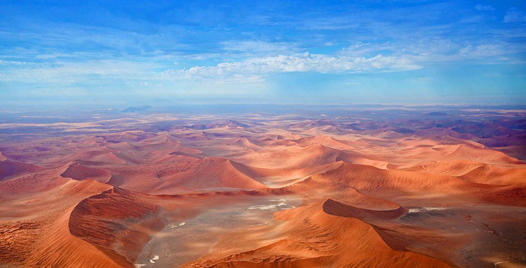 Paysage désertique en Namibie et safari