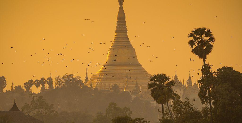 Arrivé à Yangoon, vous serez dans les meilleures conditions pour visiter cette terre sacrée et préservée