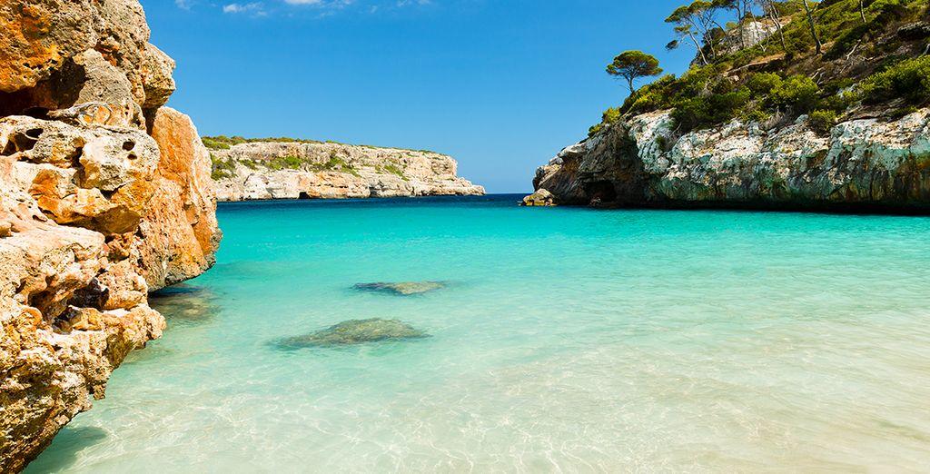 Profitez-en aussi pour découvrir l'île, ses magnifiques plages et paysages