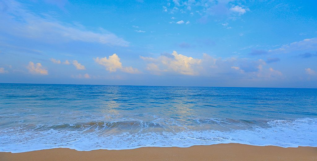 Les plages paradisiaques du Sri Lanka